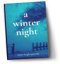 Book-a-winter-night-small